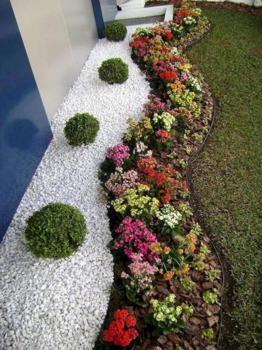 Правильное сочетание цветов — выгодное решение для любой клумбы. /Фото: i2.wp.com